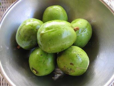 Pommecythere (Golden Apple) Kuchela