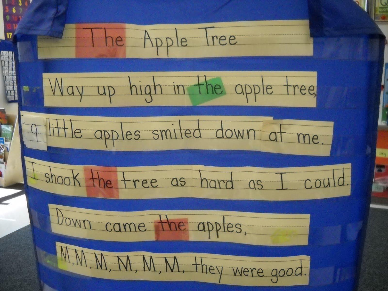 Mrs Wood S Kindergarten Class Apple Math