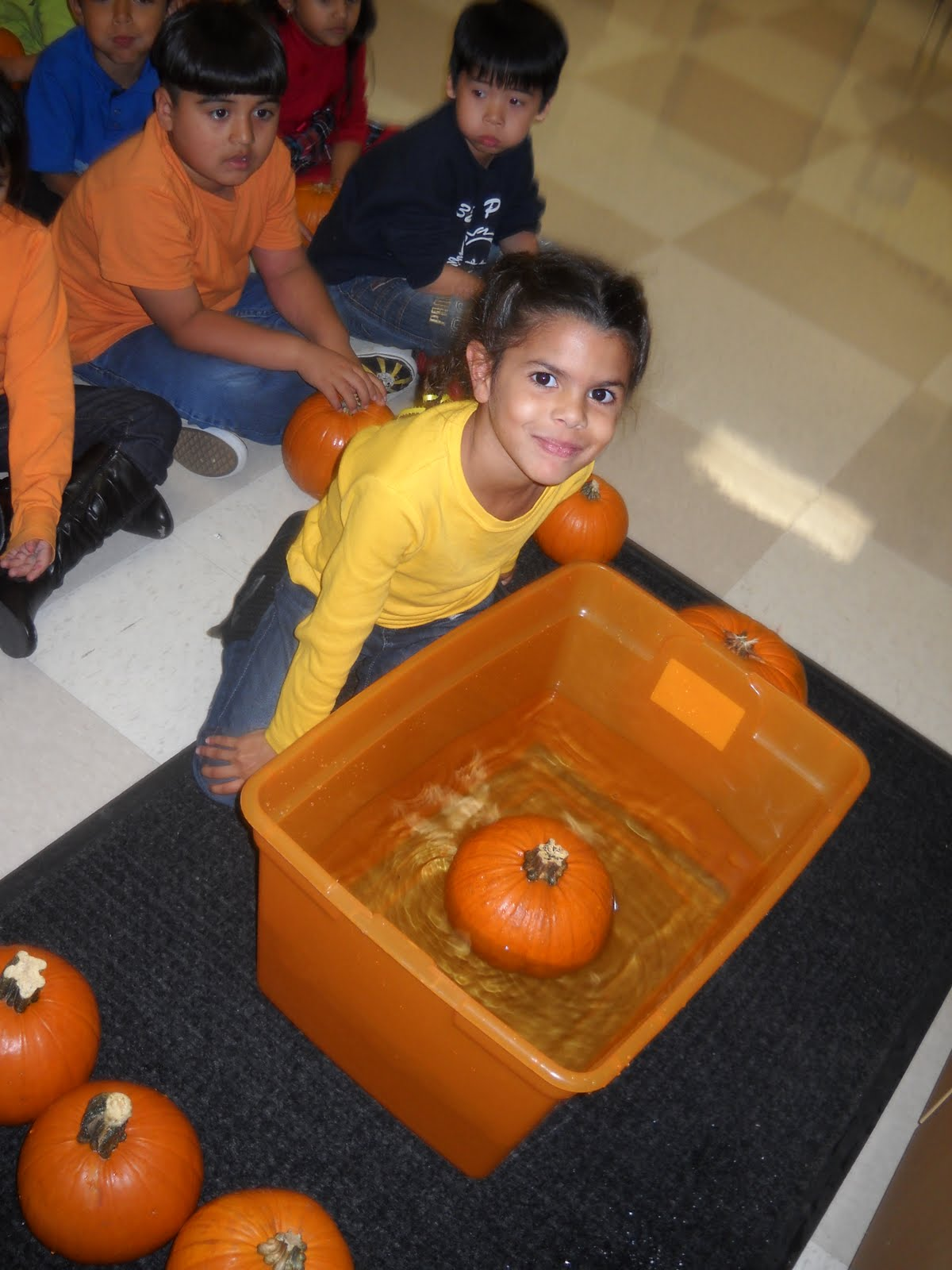 Kinder Garden: Mrs. Wood's Kindergarten Class: Do Pumpkins Sink Or Float?