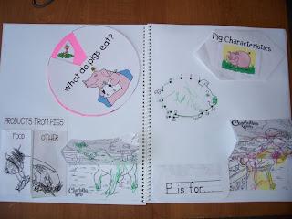 Charlotte's Web Lapbooks