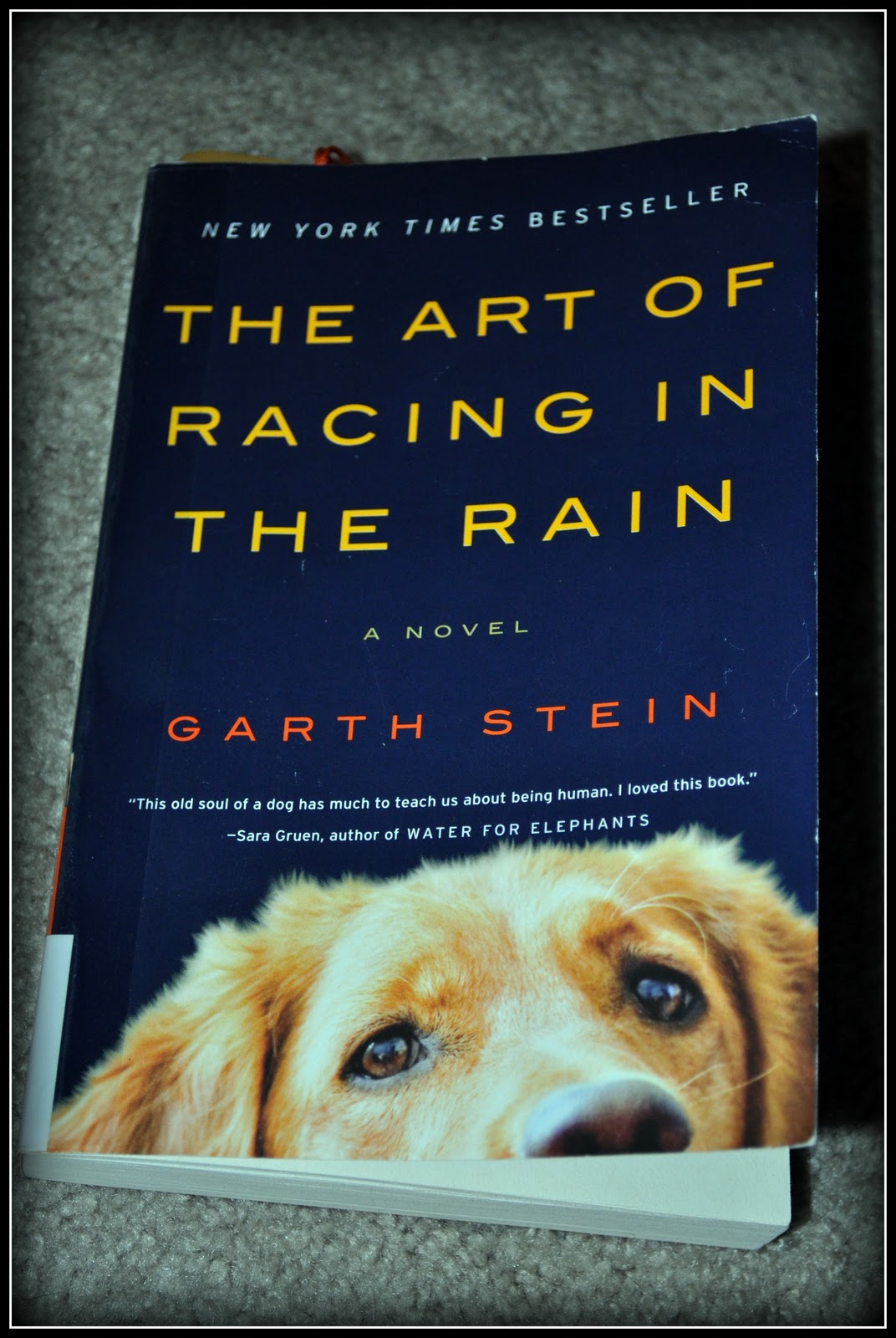 The Art Of Racing In The Rain: The Mermaid Chair & Art Of Racing In The Rain
