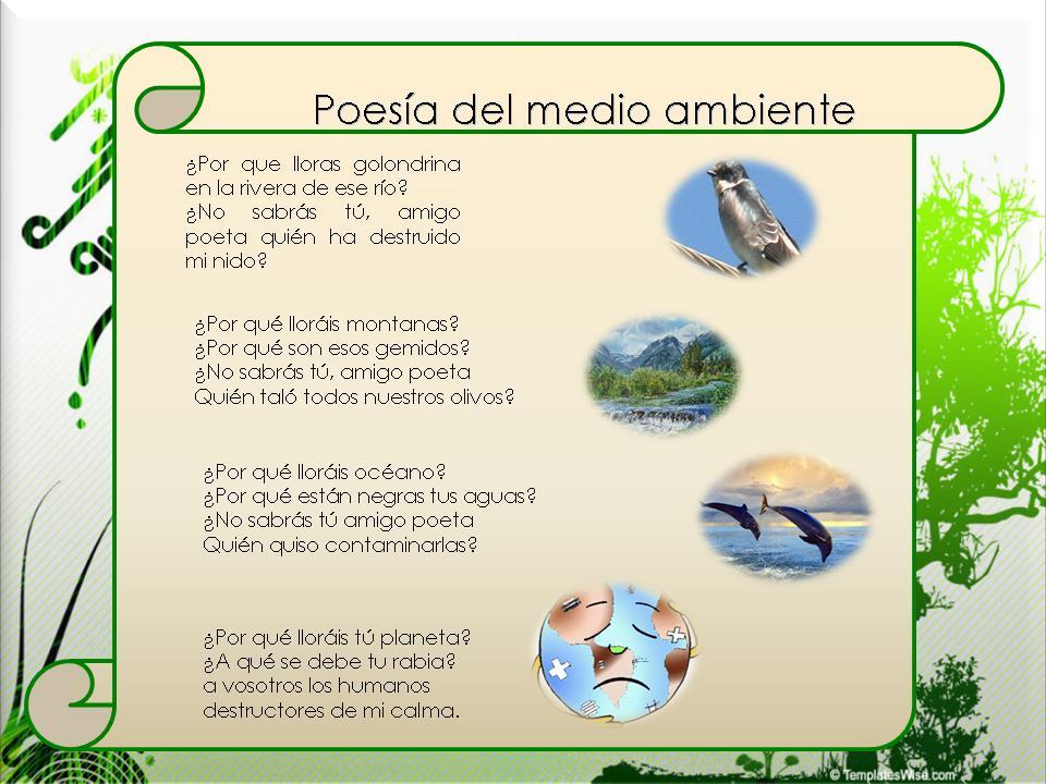 Poesía Del Medio Ambiente Un Mundo Mejor Hello
