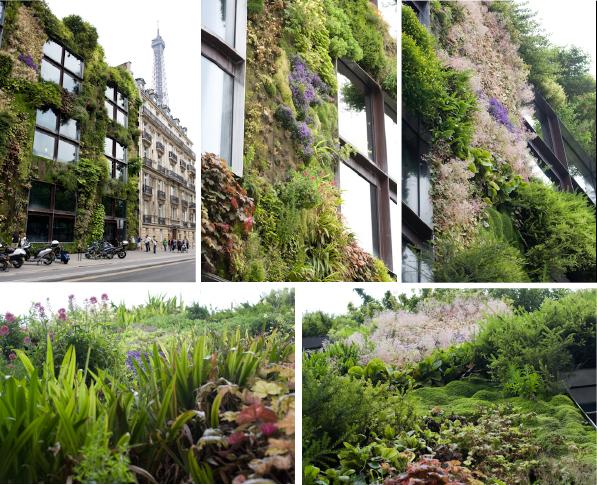 Gartenblick Gartenfotografie Hängende Gärten Am Museum Quai Branly