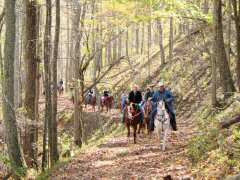 Happy Trails! Horseback Riding in North Carolina - a great way to see the mountains