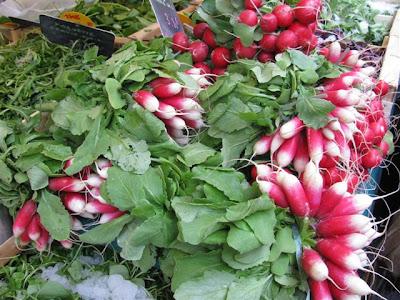 French radish