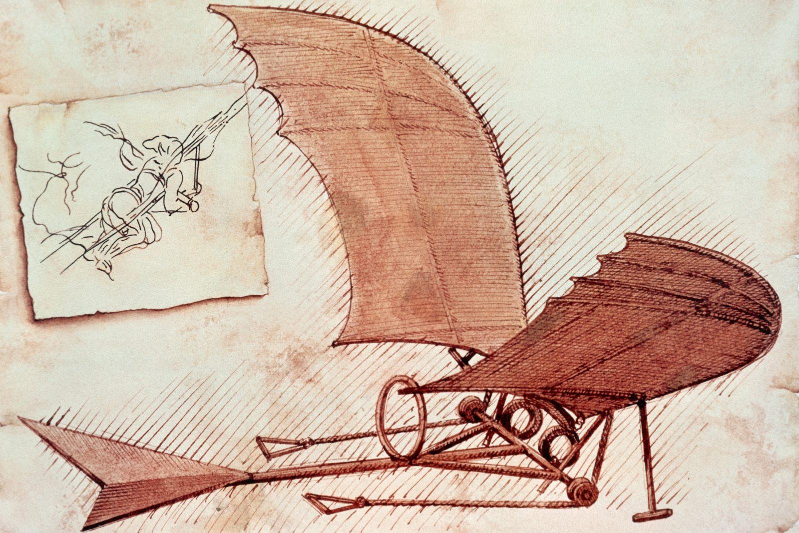 Drawing At Duke The Drawing Of Leonardo Da Vinci