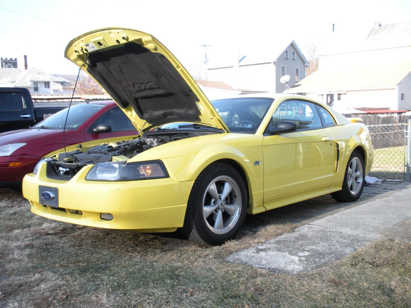 Bryan S Mustang