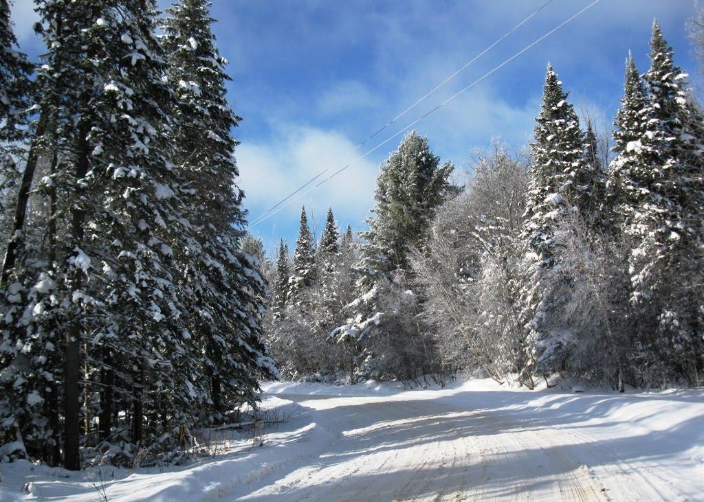 Windswept Adventure Part One Beautiful Adirondack Winter