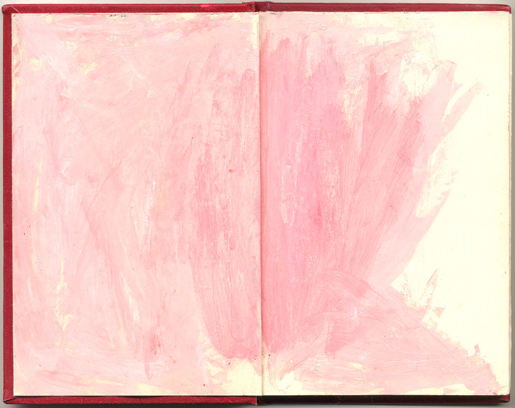 (pink), And Other Observations, 2007. pen, acrylic & collage on altered book.