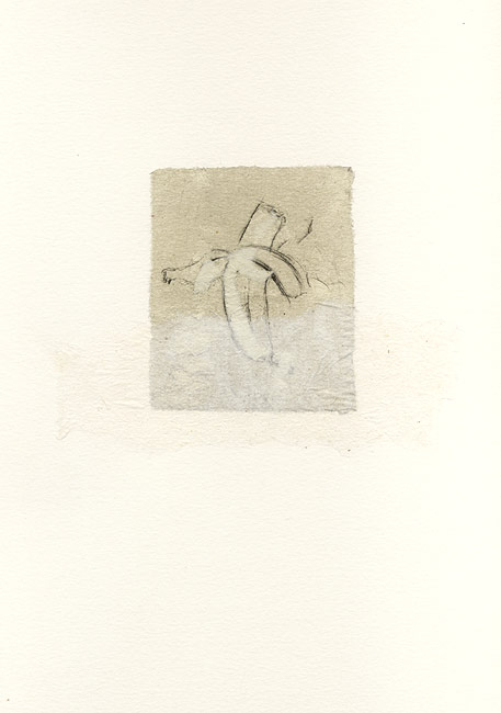 Peel, 1997, Fruit series. drypoint & chine colle on Arches printmaking paper. 8.3 x 7.1 cm (plate image size)