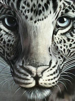 Fantasy Art Of Illusion Amazing Optical Illusion Ever
