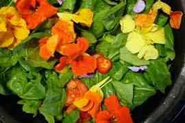 Flores para comer