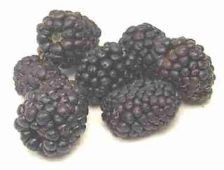 frambuesas negras