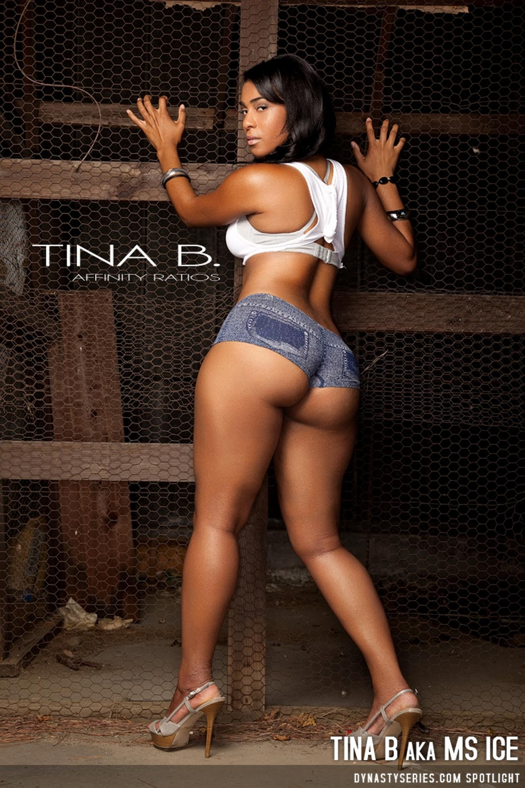 figure women tina b aka ms ice