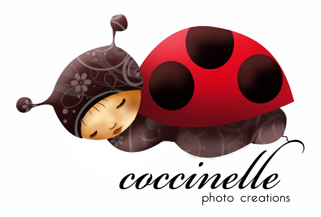 logo coccinelle pour une talentueuse photographe ptit blog d 39 une illustratrice jeunesse. Black Bedroom Furniture Sets. Home Design Ideas