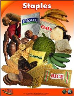 Six Food Groups used in the Caribbean