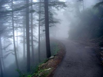 Galeria de fotos de belas estradas