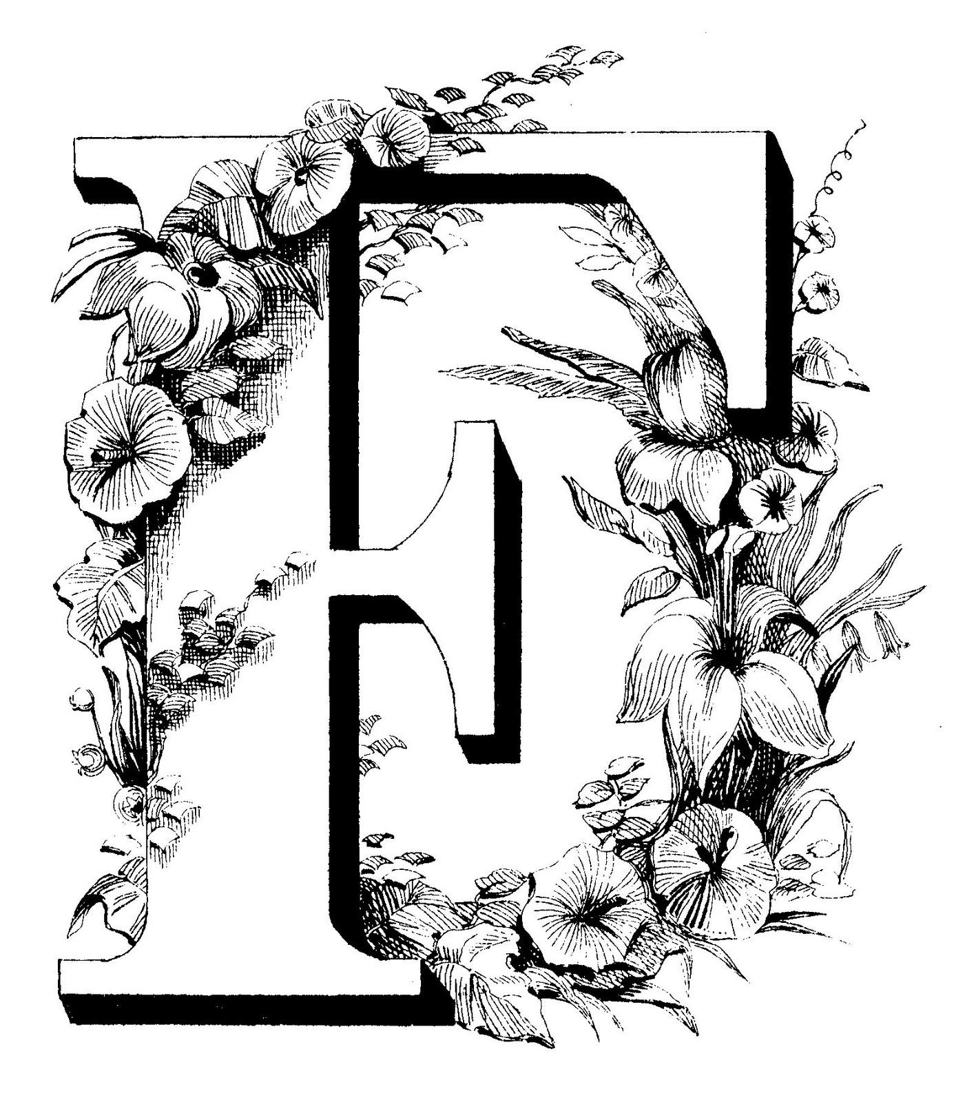 Fancy Letter M Designs Fancy Letter B Designs Www Imgkid Com