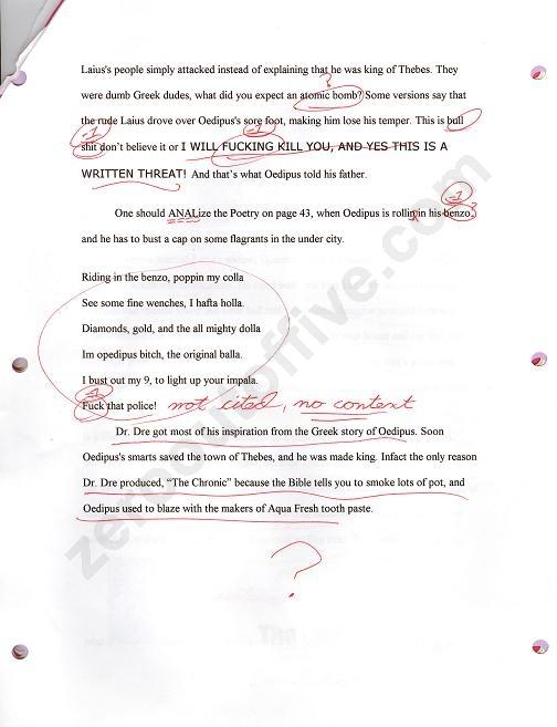 white lie essay  hyderabad   white lie essayjpg