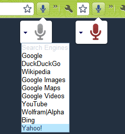 Voice Search Extension