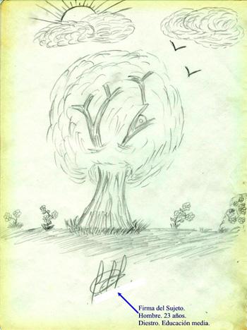 Test del rbol de karl koch for Que significa dibujar arboles secos