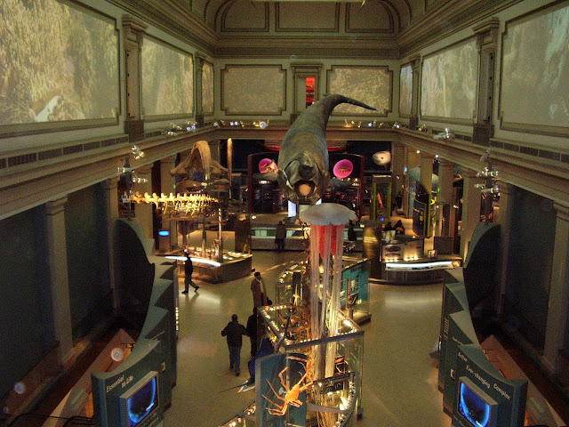 museums in DC, Washington DC