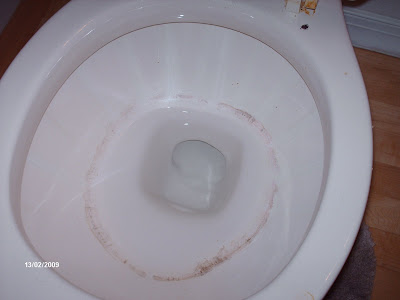Happy Clean Living Cleaning A Toilet And Getting Rid Of