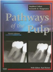 333 Download Pathways of the Pulp PDF
