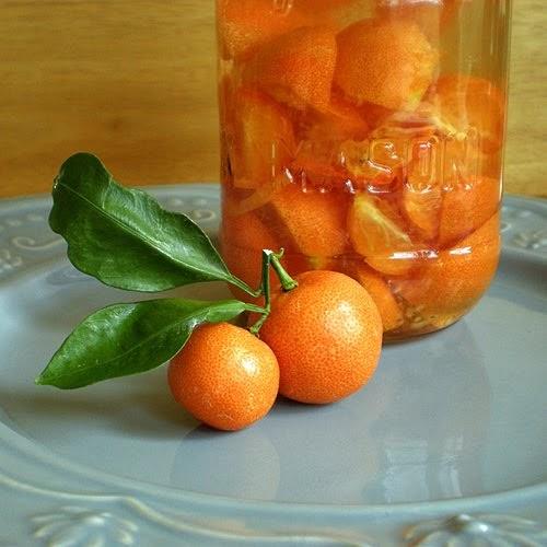 Foy Update: Sour Orange Infused Vodka