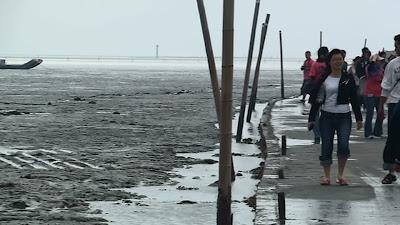 環境報導 : 濁水溪口股東同樂 我買的地在哪裏?
