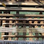 Refreshing East River - Below the J/M/Z Train tracks on the Williamsburg Bridge.