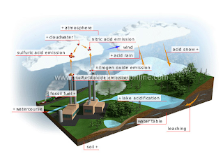 Understanding how acid rain forms and its negative effects