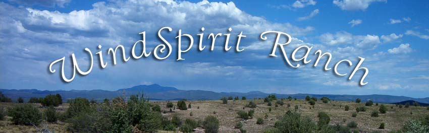 Life and Art at WindSpirit Ranch