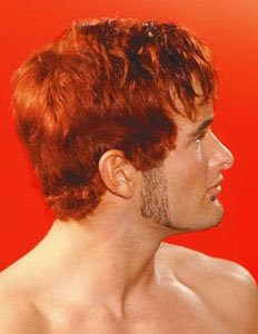 мъжка прическа червена коса