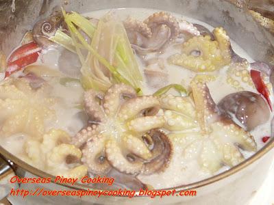 Ginataang Pugita, Baby Octopus in Coconut Milk - Cooking Procedure