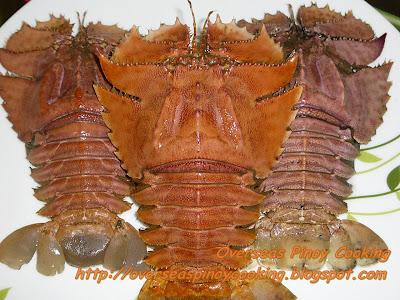 Pitik, Slipper Lobsters