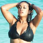 Mumaith Khan Hot Bikini Wallpapers