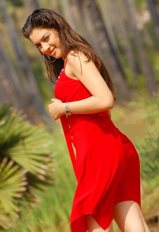Hansika Hot Back Pose | Hansika Cute Photos