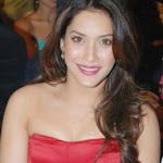 Rashmi Nigam Sexy Pics
