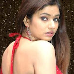 Poonam Bajwa Sexy Pics