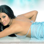 Geetha Basra Sizzling Hot Movie Scans