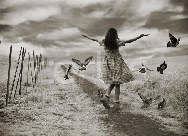 O Verdadeiro Motivo Da Sua Inveja é Que Janrô: Live A Dream: O Passado Já Não Importa Mais