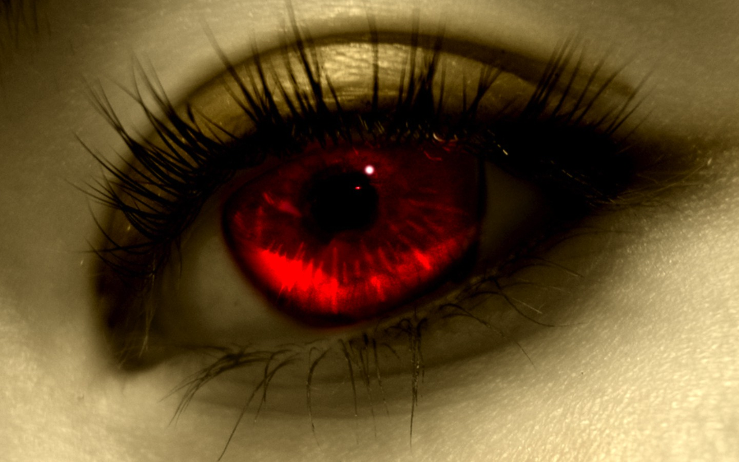 Attractive eyes art design stock images 1440x900 free download