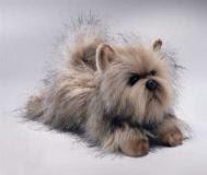 cairn terrier plush stuffed animal
