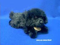 newfoundland plush stuffed animal