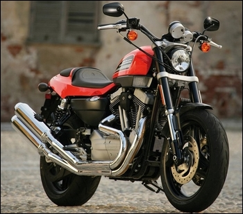 Harley-Davidson Sportster XR 1200 ~ International Motor Sport