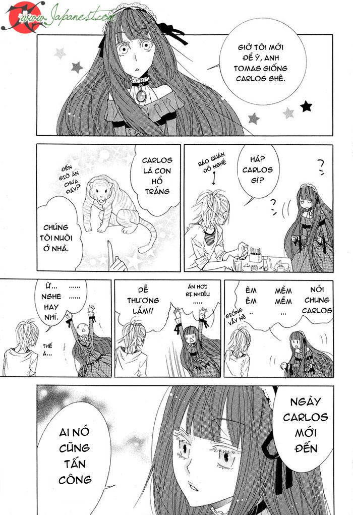 Vampire And Shinigami