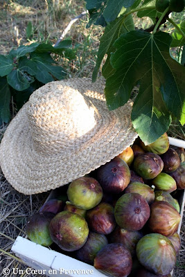 Crates with figs and straw hat