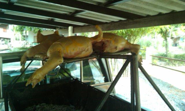 BBQ Pork in Pattaya