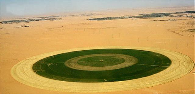 No Egito, o reverdecimento avança em escala industrial com modernos métodos de rega artificial